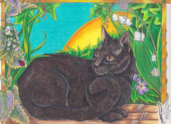 Lady Panther American Bombay Cat Portrait by Black-Feather