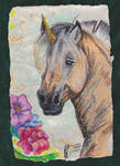 Fjord Pony Unicorn in Oil Pastel by Black-Feather