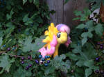 Needlefelted Fluttershy