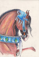 Arabian in Mideaval Costume by Christine Rietsch by Black-Feather