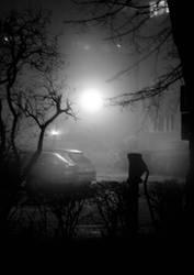 secret place by AylaBlack