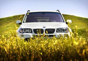 BMW X3 by Tagirov