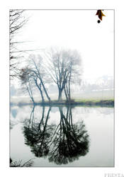 Reflections II by Fresta