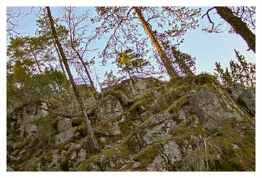 Aulanko: Cliffy by musilowski