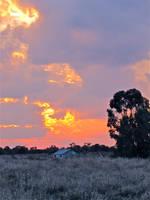 Desert Sunset by Dace54874