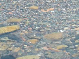 Rock Pool by Dace54874