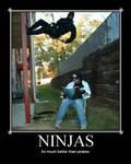 Ninja vs. Pirate