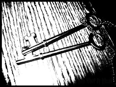 Skeleton Keys by Hallovv