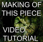 Photomanipulation tutorial vid