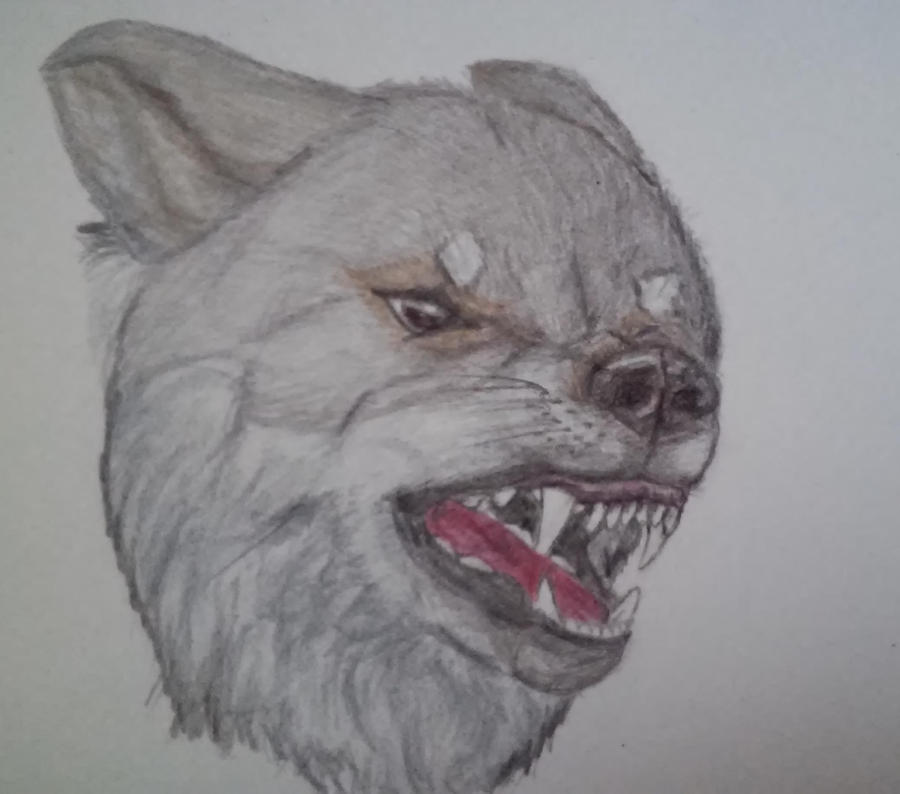 Angry by varinike