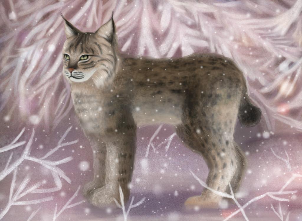 Lynx by mady95