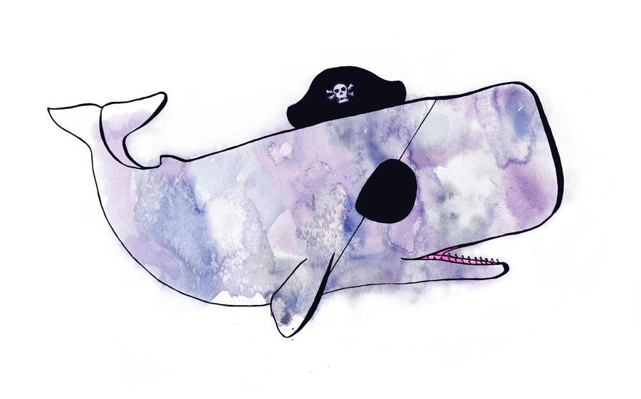 Pirate Whale Sketch by Sarahorsomeone