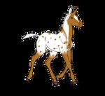 Foal Design: Double Vision x Golden Essence