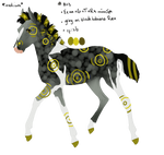 8113 Padro Foal Design by WildOracle