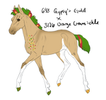4710 Padro Foal Redesign by WildOracle