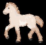 N2448 Padro Foal Redesign
