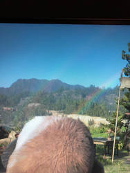 Red Dead Redemption 2: Double Rainbow!