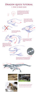 Dragon TUTORIAL: Heads