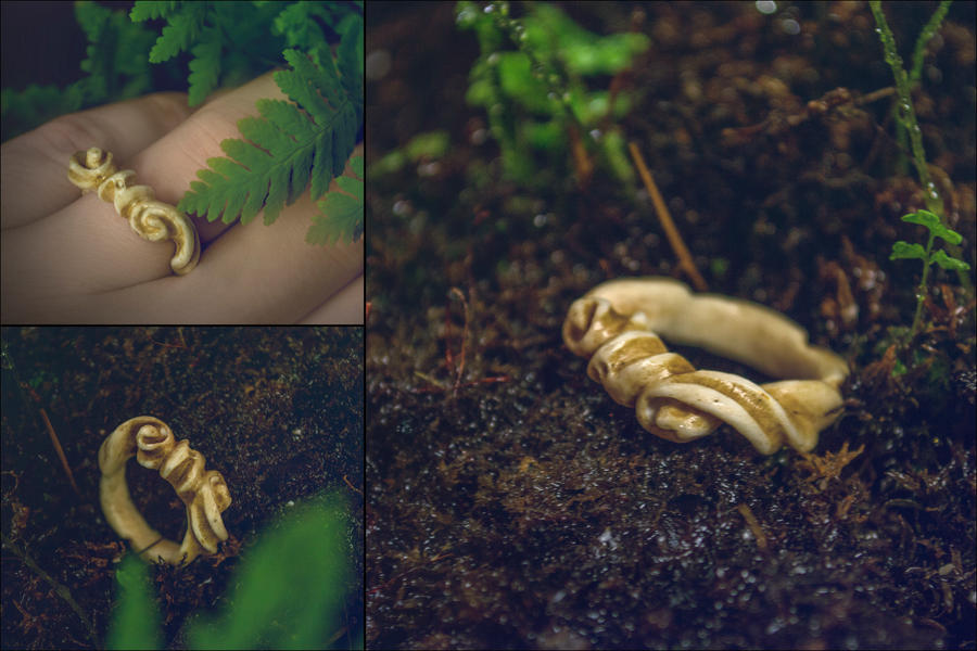 Carved Bone Ring By Erzsebet Beast On Deviantart
