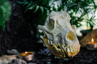 Carved dog skull