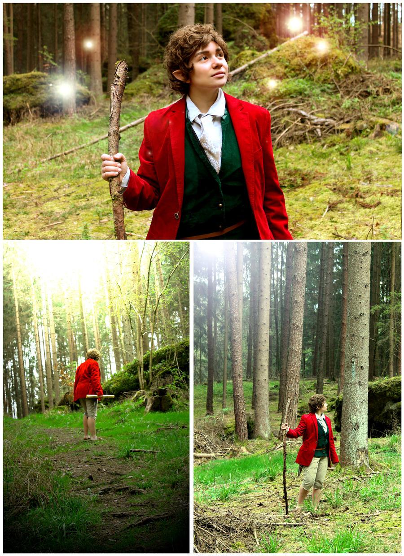 Bilbo-Cosplay - in nature 3 by XxGogetaCatxX