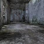 The Dark Basement