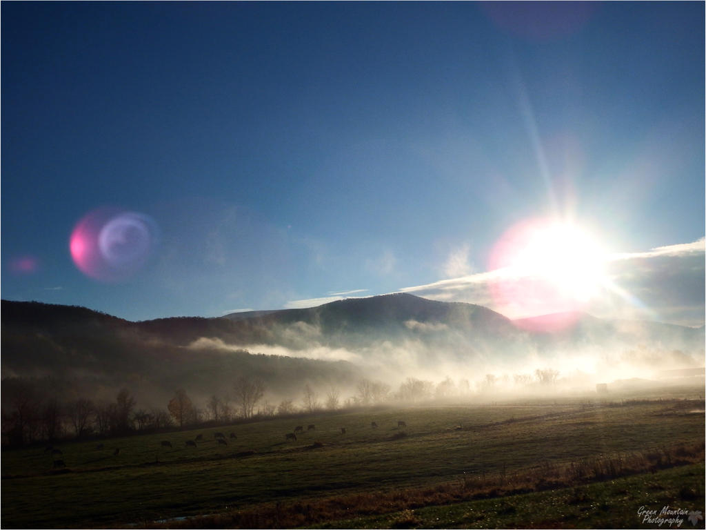 Morning Country Fog. by Sparkle-Photography