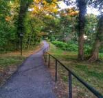 Train Path.
