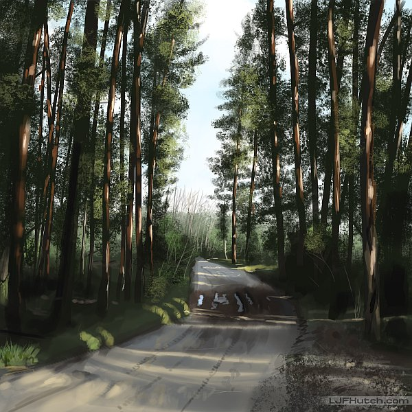 Study - Forest Road by LJFHutch