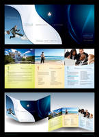 Trifold Brochure - Shidler by z-design