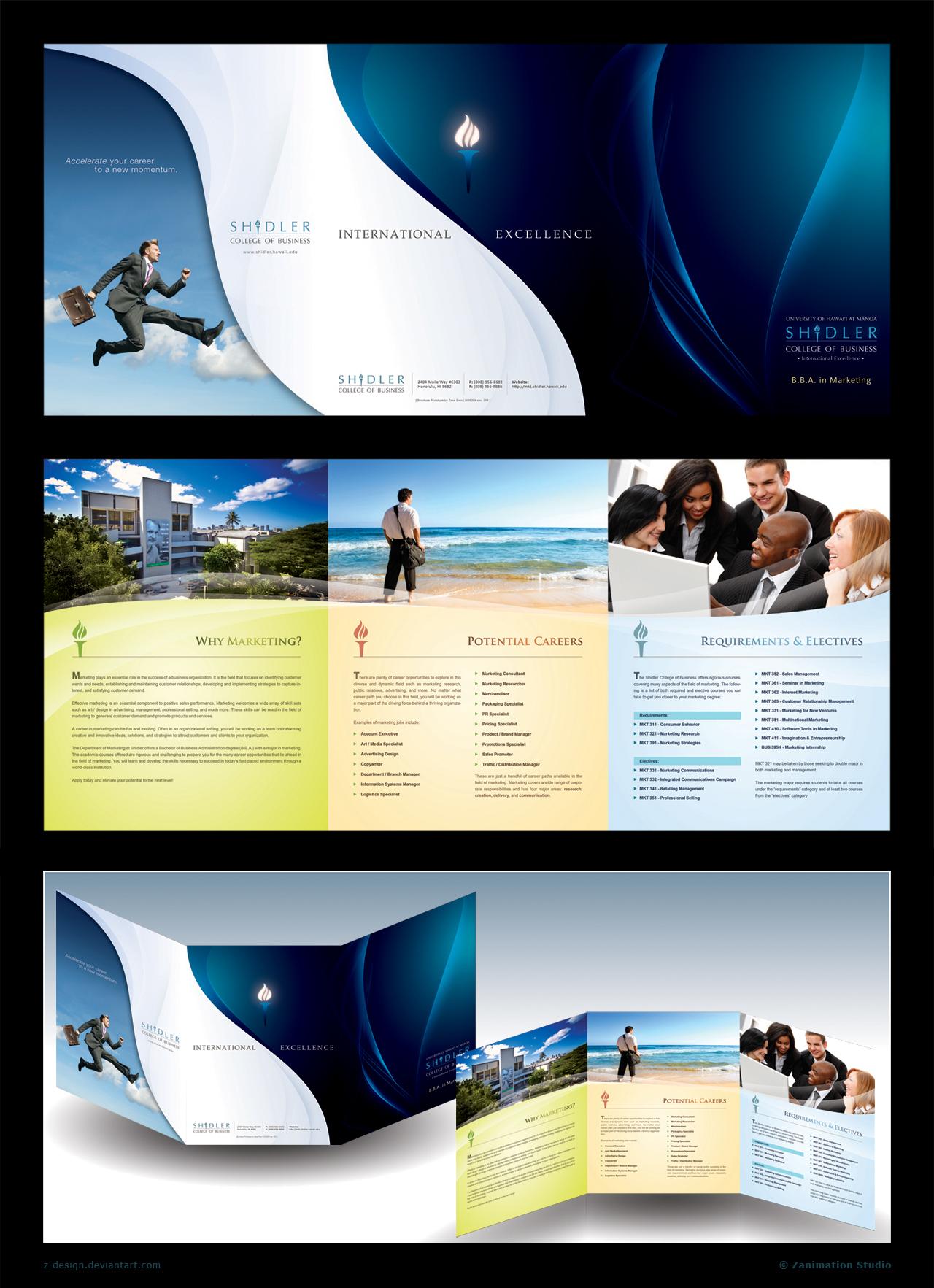 Trifold Brochure - Shidler by z-design