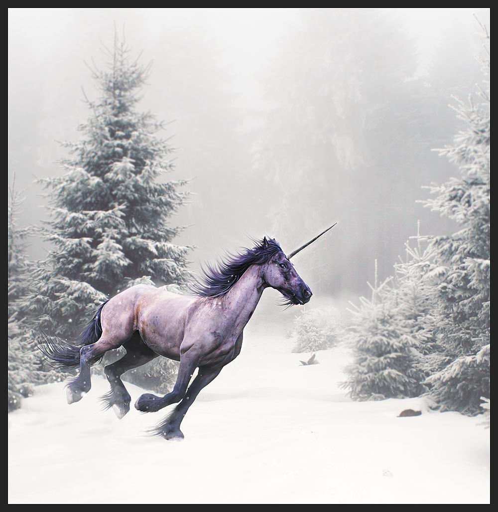 Secret Winter by xXNamaste