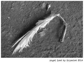 Angel Lost by krysolet