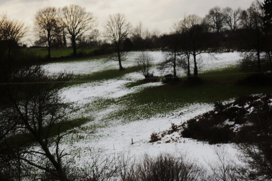 The path of snow by x-xUnicornx-x