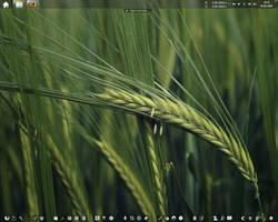 Windows 7 Desktop - June 2009 by big-ben191