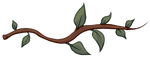 Tree Branch Divider by FloxairLair