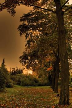 autumn-whisper 1