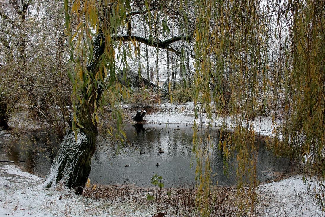 lake 14 by Drezdany-stocks