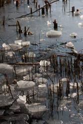 ice floe by Drezdany-stocks