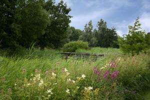 garden 19 by Drezdany-stocks