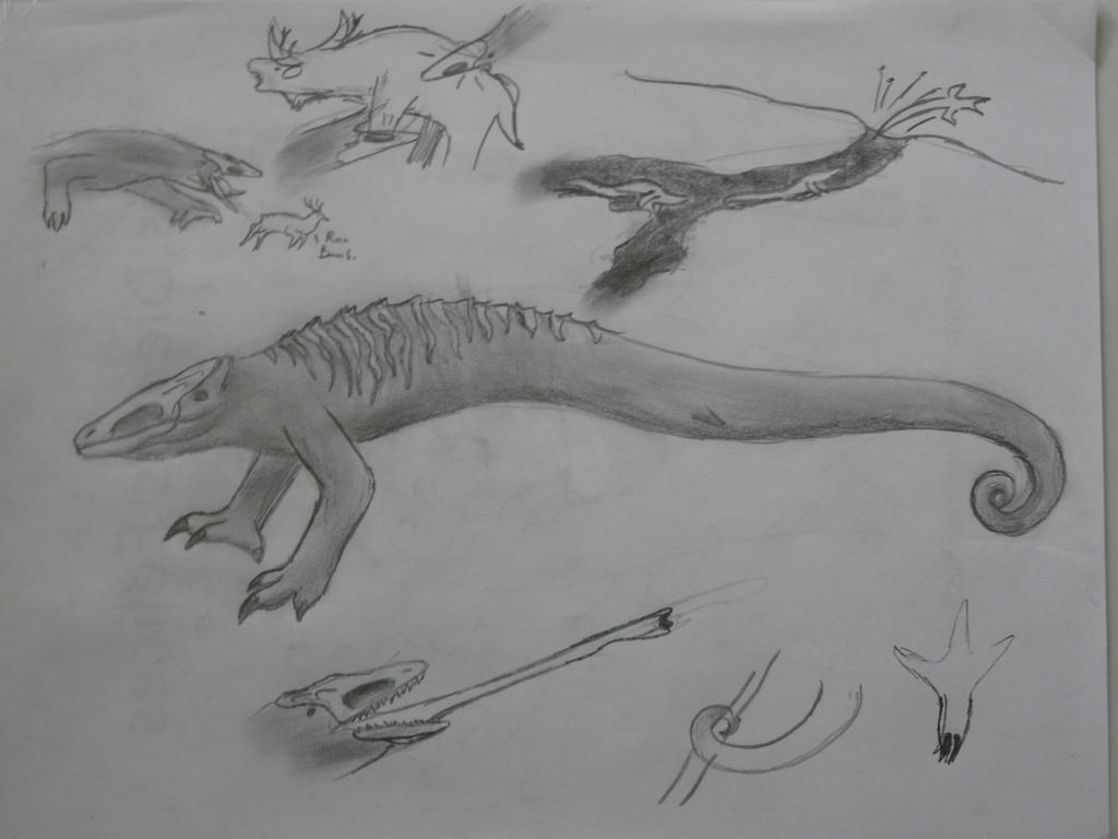 SkullCrawler by SpeculaTimsauru5