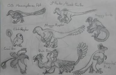 Weird Wednesday - Raptor Breeds