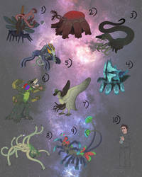 The Intergalactic Alliance: Species Chart