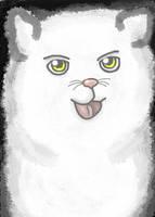 White Kitty Cat~ by 11KairiMayumi11