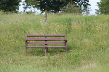 Bigger bench