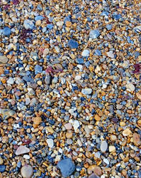 stones ( beach shingle)