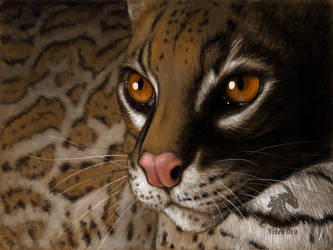 Ocelot (digitally painted) by VixenDra