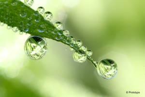 Waterdrop 3 by Prototyps