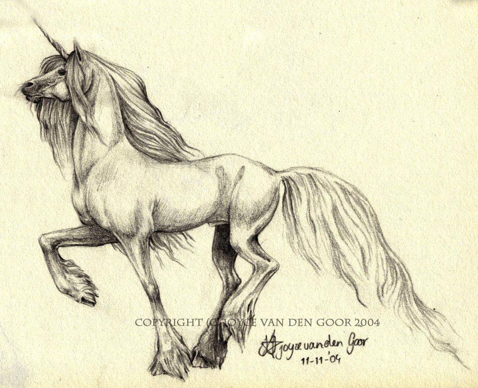 http://fc05.deviantart.com/fs8/i/2005/357/f/7/_unicorn__by_daisyamnell.jpg
