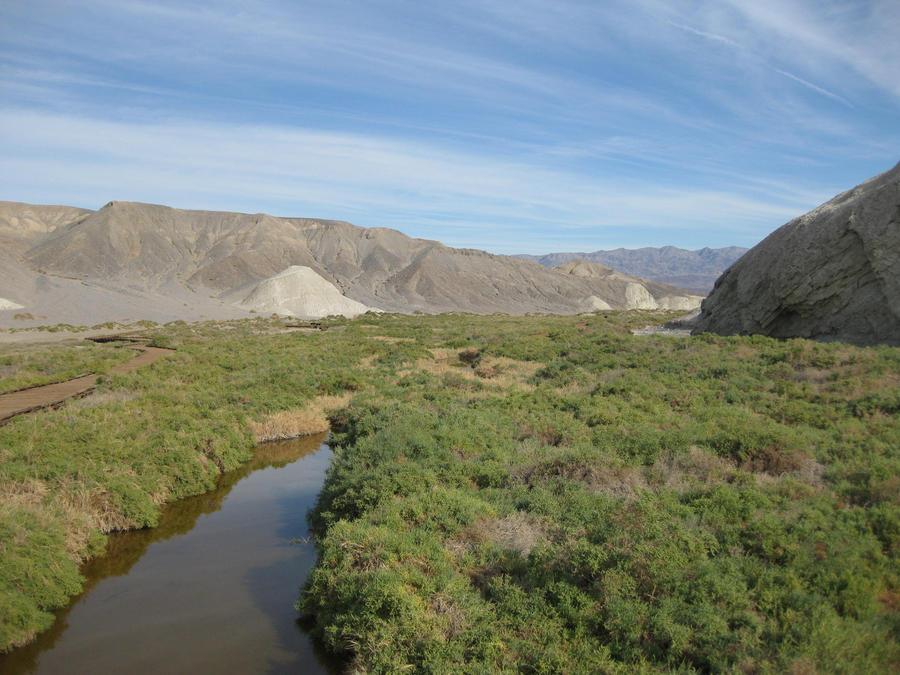 desert photo 4